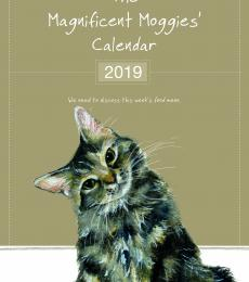 magnificent moggies 2019 cat calendar little dog laughed
