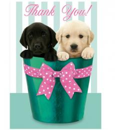 TY Pups in Pots Notecards