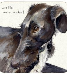 lurcher rescue coaster look of love little dog laughed anna danielle