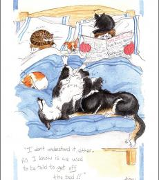 alison's animals greeting card bedwarmers
