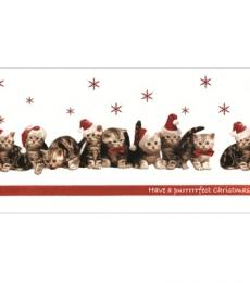 Cats in Hats National Animal Welfare Trust Christmas Card
