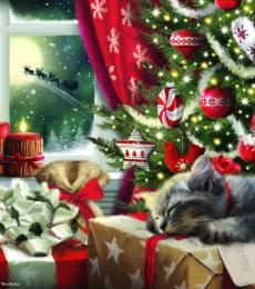 christmas dreams cat