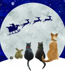 christmas dogs and cats