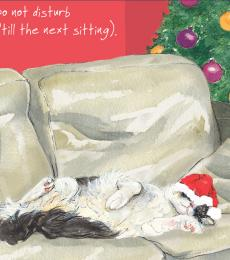 Little Dog Laughed Digs & Manor Christmas Greeting Card Cat Do Not Disturb
