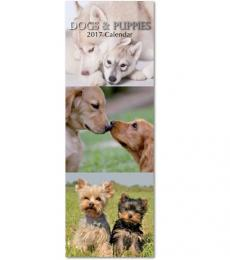 Gifted Staionery Company Slimline dogs and puppies Calendar 2017