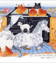 alison's animal greeting cards james herriott who left the kitchen door open
