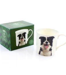border collie mug dog breed