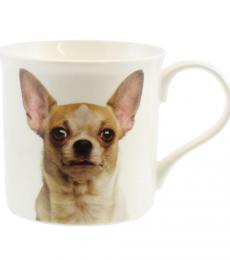 Chihuahua mug dog breed