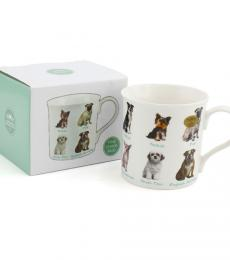 china boxed mug dog breeds