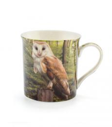 barn owl bird mug