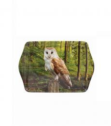 woodland barn owl small tray