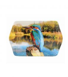 kingfisher bird lake small tray