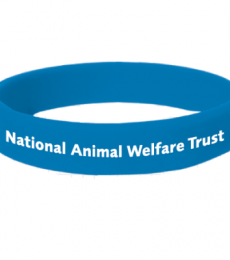National Animal Welfare Trust NAWT charity wristband