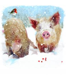christmas cards pigs in the snow