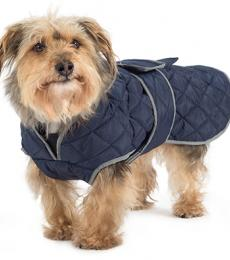 Ancol muddy paws quilted navy dog coat
