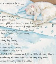 remember cat condolence card little dog laughed anna danielle