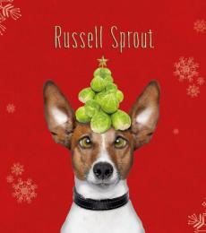 National Animal Welfare Trust Christmas Card Cat Russell Sprout Jack Russell Brussel Sprouts
