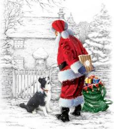 National Animal Welfare Trust Christmas Card Santa's Helper Collie Father Christmas