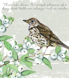 song thrush greeting card little dog laughed anna danielle