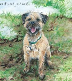 Little Dog Laughed It's Not Just Mud Greeting Card border terrier