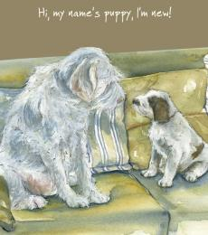 Little DogLaughed Puppy Greeting card