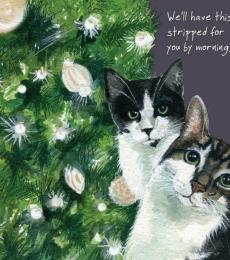 little dog laughed cat stripped christmas card