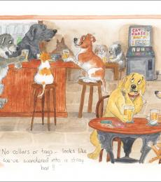 alison's animal greeting cards stray bar