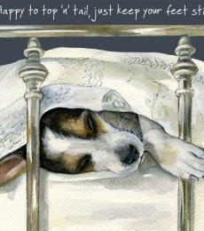 top and tail jack russell greeting card little dog laughed anna danielle