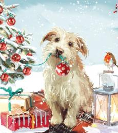 dog robin xmas card