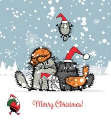 cat christmas card