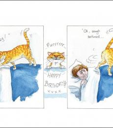 alison's animals greeting cards wakey wakey