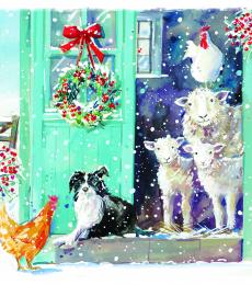 christmas cards sheep hens collie dogs