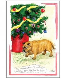 Alison's Animals Splimple Christmas Card Dog they complain about me moulting