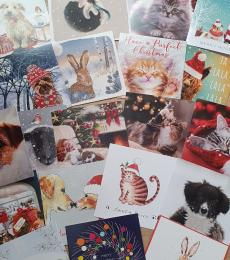 bumper pack christmas cards
