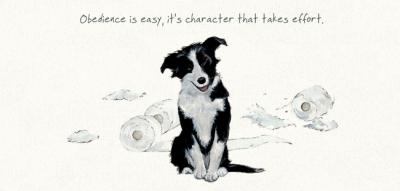 obedience collie greeting card little dog laughed anna danielle