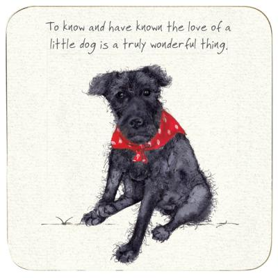 patterdale terrier coaster little dog laughed anna danielle