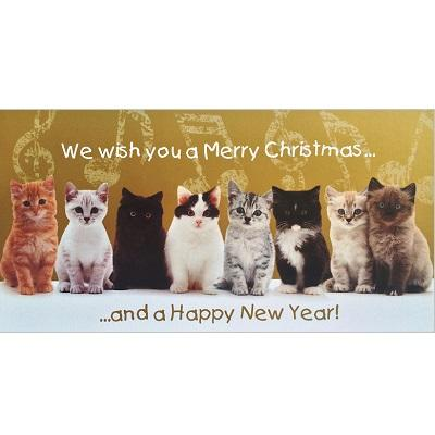 National Animal Welfare Trust charity Christmas Card Chorus Line kittens greeting