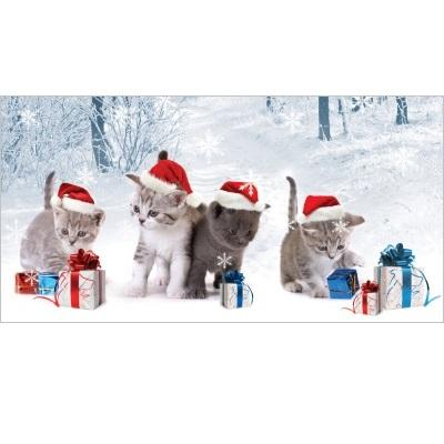 Cats and Presents National Animal Welfare Trust Christmas Card
