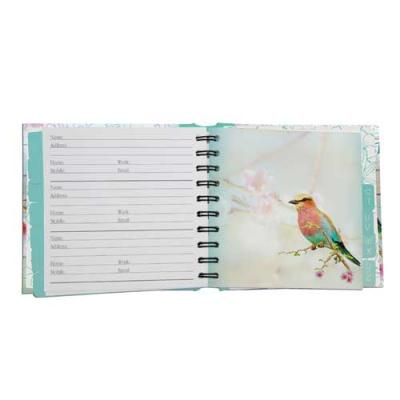 dawn chorus address book