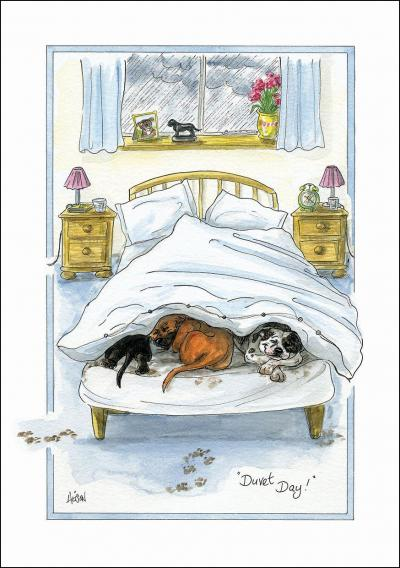 alison's animals greeting card duvet day