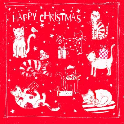 National Animal Welfare Trust Christmas Card Festive Cats