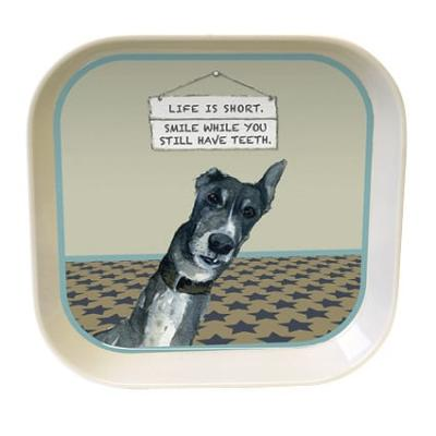 little dog laughed smile trinket tray