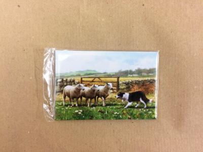 border collie sheep magnet