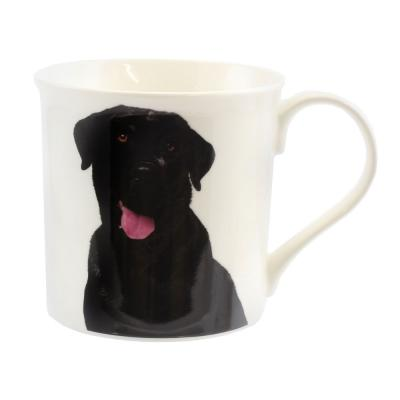 black labrador mug dog breed