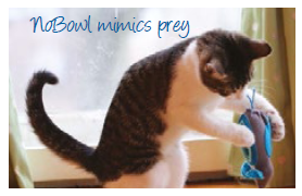 NoBowl Feeding System™ for Cats