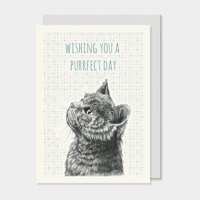 purrfect day cat greeting card east of india