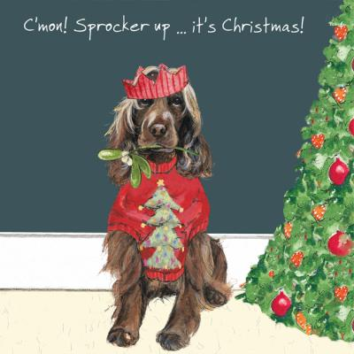 little dog laughed sprocker christmas card