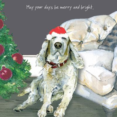 little dog laughed merry & bright christmas card