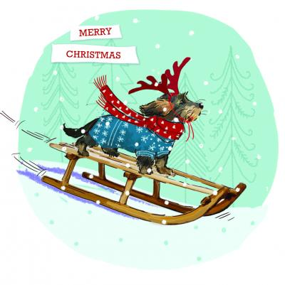 christmas cards sledge fun dogs