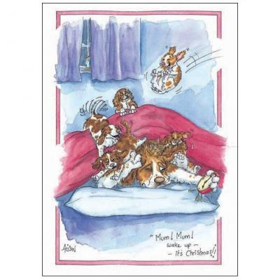 Alison's Animals Splimple Christmas Card Christmas Morning